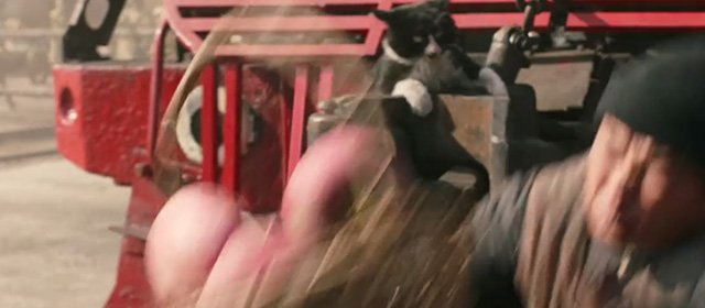 Railroad Tigers - tuxedo cat startled by falling man while hanging onto front of train which is moving back