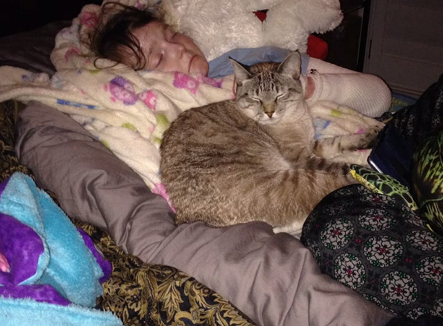Ramblin' Freak - photo of tabby cat lying next to Samantha in bed