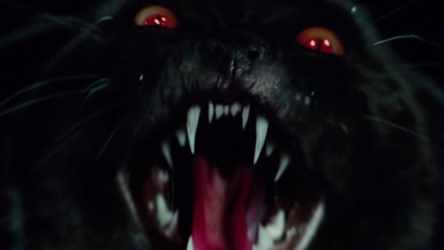 Regression - scary demon cat face