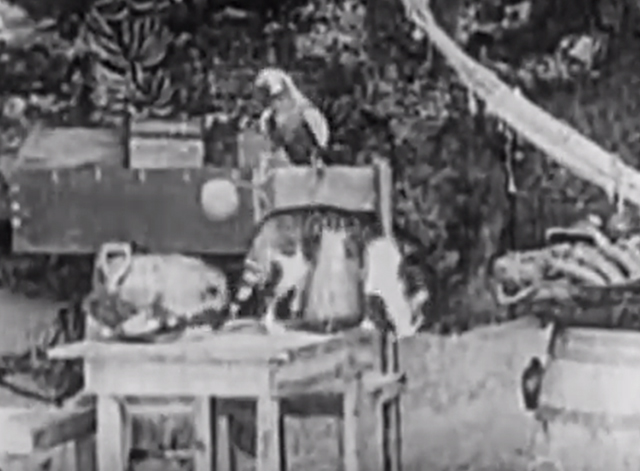 Robinson Crusoe 1927 - cat jumping down off table