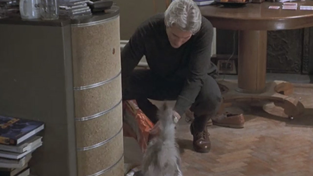 Runaway Bride - Ike Richard Gere feeding long-haired cat Italics