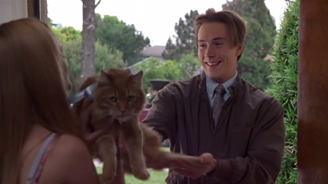 Say It Isn't So - Gilly Chris Klein reuniting Jo Heather Graham with long-haired tabby cat Ringo