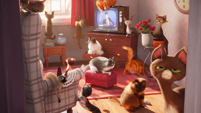 The Secret Life of Pets - multiple cats in apartment