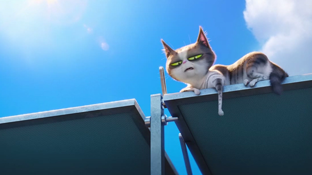 The Secret Life of Pets - tabby and white cat on solar panel