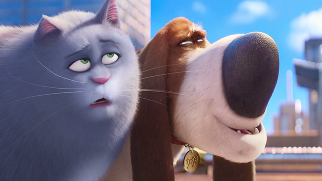 The Secret Life of Pets - gray tabby Chloe with elderly basset hound Pops