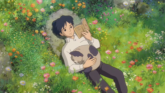The Secret World of Arrietty - Niya cat lying on Sho's stomach in garden