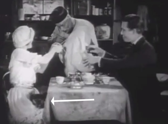Shadows - Sympathy Marguerite De La Motte with bengal tabby cat on lap at table with Minister Maldon Harrison Ford and Yen Sing Lon Chaney