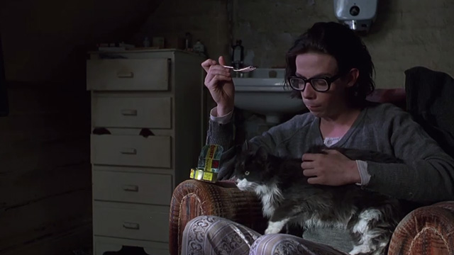 Shine - college student David Helfgott Noah Taylor sharing tin of sardines with long-haired gray and white cat