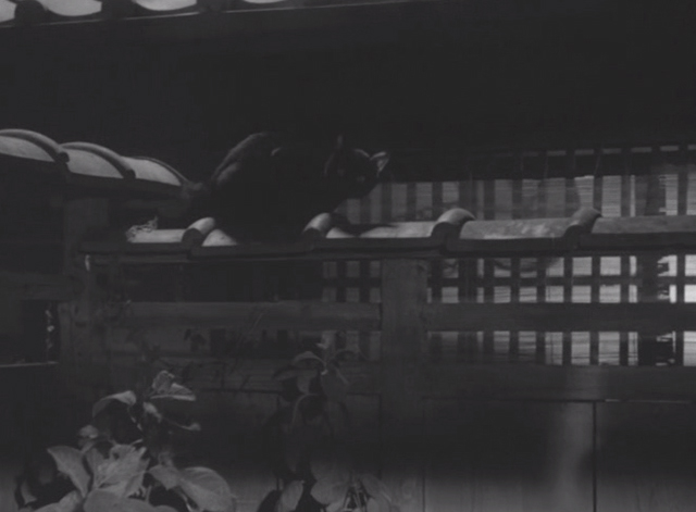 Shozo, a Cat and Two Women - black cat on fence