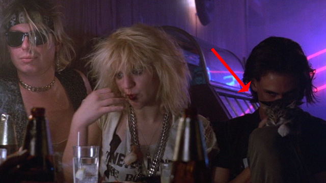 Sid and Nancy - punk rockers at table with one tabby kitten