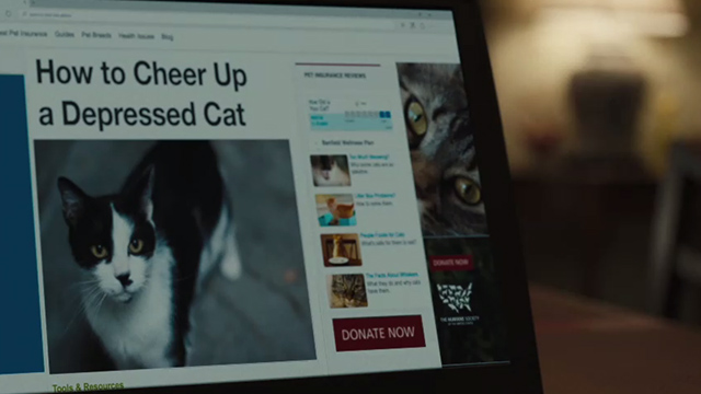 Snatched - computer screen with tuxedo cat photo and article how to cheer up a depressed cat