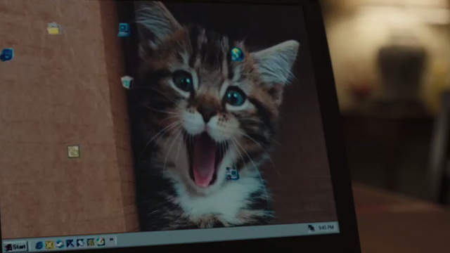 Snatched - silly kitten with mouth open on computer screen