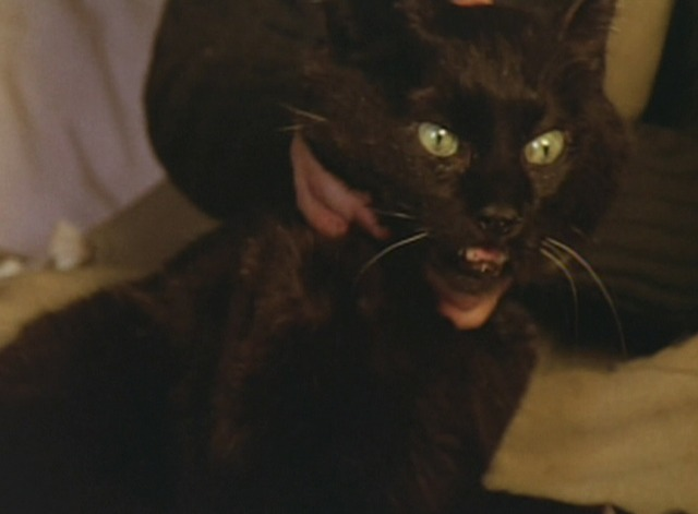 The Spirit of the Beehive - black cat pulls away from Isabel strangling