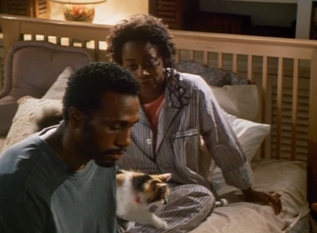 Spirit Lost - long haired calico cat Spider on bed with Willy Regina Taylor and John Leon