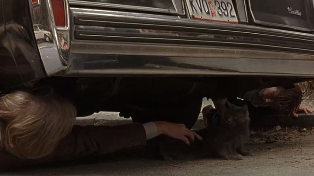 The Squid and the Whale - Bernard Jeff Daniels reaching for long-haired gray cat under parked car