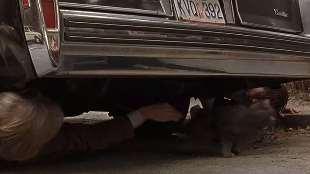 The Squid and the Whale - Bernard Jeff Daniels losing grip on long-haired gray cat under parked car