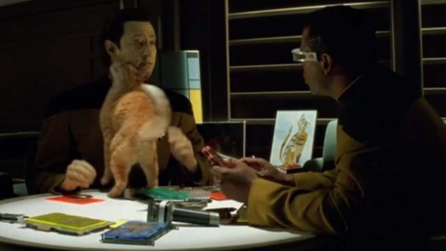 Star Trek: Generations - Spot orange tabby cat on table rubbing Data Brent Spiner with Geordi Levar Burton