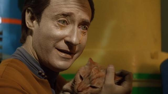 Star Trek: Generations - Spot orange tabby cat being held by crying Data Brent Spiner