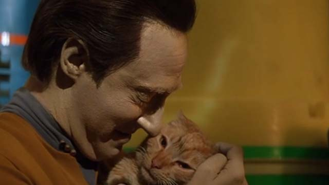 Star Trek: Generations - Spot orange tabby cat being held by Data Brent Spiner