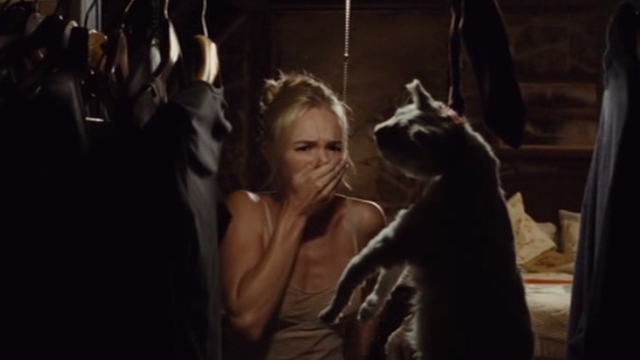 Straw Dogs 2011 - white cat Flutie hanging in closet seen by Amy Kate Bosworth