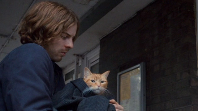 A Street Cat Named Bob - James Bowen Luke Treadway helping orange tabby Bob close up