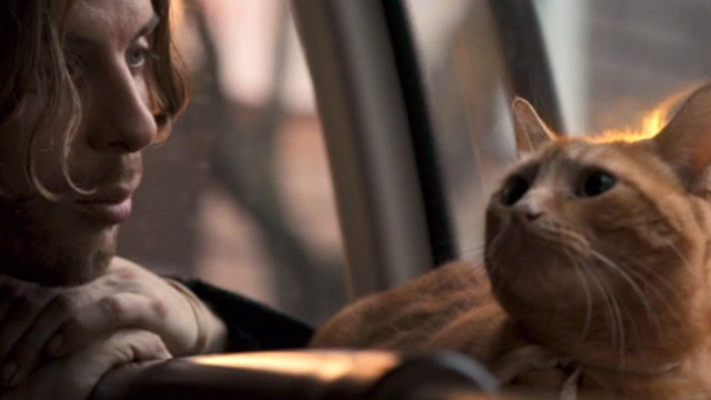 A Street Cat Named Bob - James Bowen Luke Treadway with orange tabby Bob close up on bus