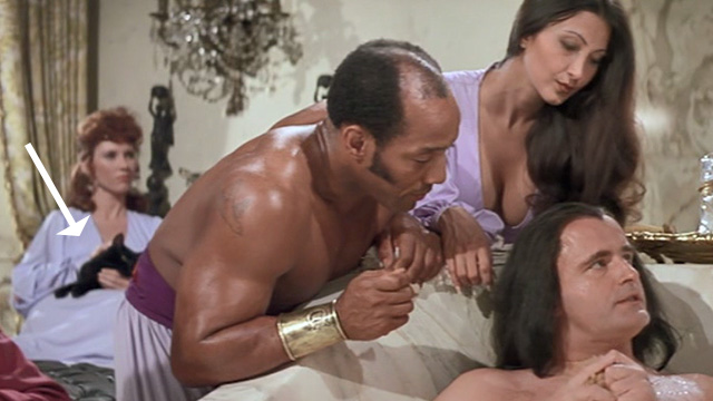 Swashbuckler - long haired black cat being held by a woman in the background while Lord Durant Peter Boyle takes a bath