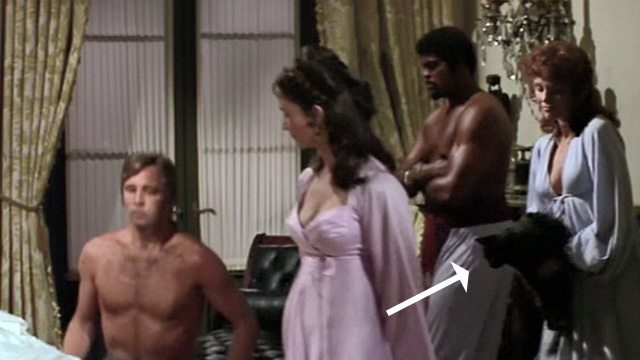 Swashbuckler - long haired black cat being set down by woman in background as Major Folly Beau Bridges sits down