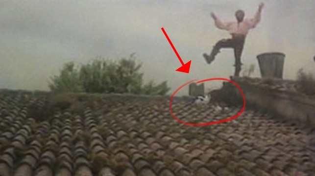 The Taming of the Shrew - Petruchio Richard Burton on rooftop with cats