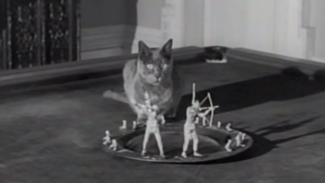 Ten Little Indians - gray cat sitting on pool table with remaining Indians on tray