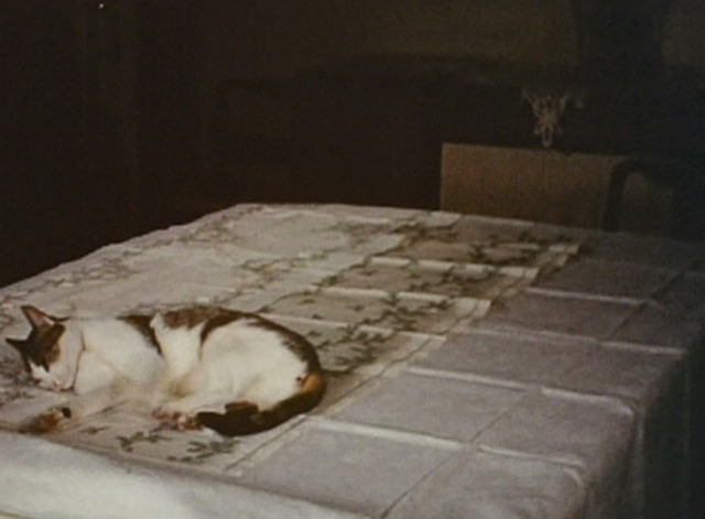 The Third Reich: The Rise and Fall - cat lying across Christmas runner on table