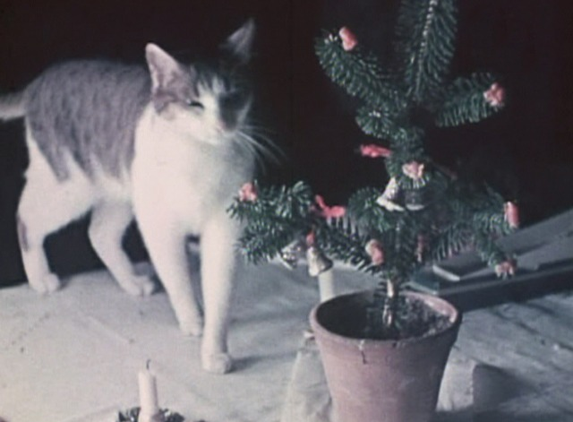 The Third Reich: The Rise and Fall - cat on table with Christmas tree