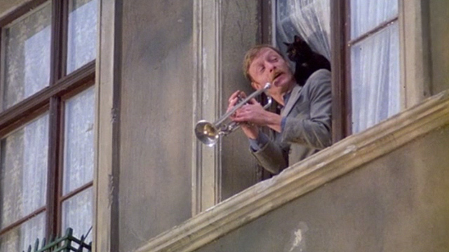 The Tin Drum - Meyn Otto Sander playing trumpet at window with black cat on shoulder again