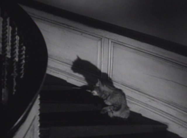 The Uninvited cat Frisky okay on stairs