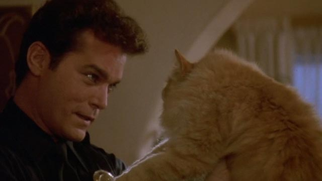 Unlawful Entry - Officer Pete Ray Liotta holding up orange long-haired tabby cat Tiny