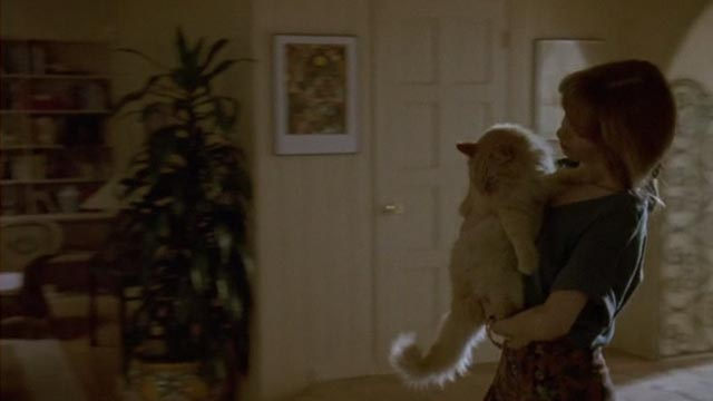 Unlawful Entry - Penny Deborah Offner carrying orange long-haired tabby cat Tiny
