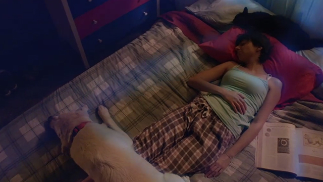 Unleashed - Emma Kate Micucci sleeping on bed with tuxedo cat Ajax and dog Summit
