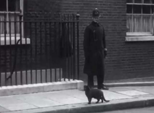 War Cabinet 1940 - black cat pausing on sidewalk with guard watching