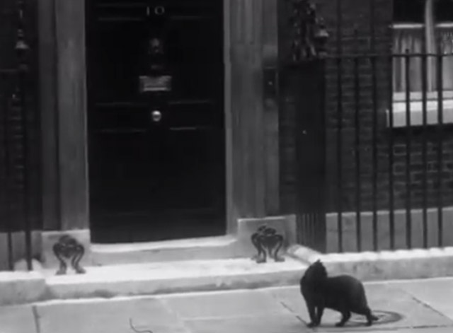 War Cabinet 1940 - black cat looking over shoulder in front of 10 Downing Street, London