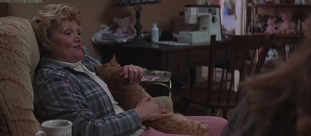 What Lies Beneath - Mrs. Frank Micole Mercurio petting ginger tabby cat on chest