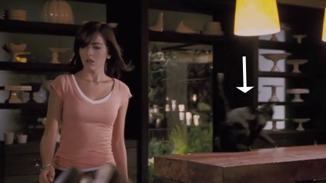 When a Stranger Calls - black cat Chester running off kitchen counter with Jill Camilla Belle