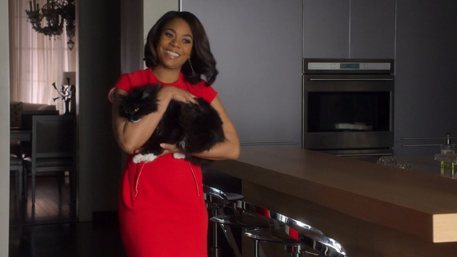 When the Bough Breaks - long haired tuxedo cat Miss Havisham being carried by Laura Regina Hall