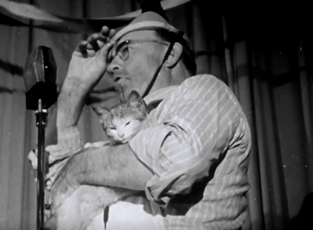 When Work is Done - cat in square dance caller's arms