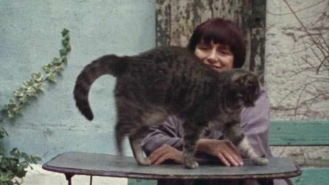 The World of Jacques Demy - Agnès Varda with gray tabby cat Zgougou walking in front of her on table