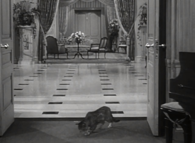You Never Can Tell - tabby cat Boots entering room