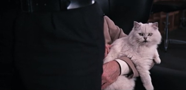 You Only Live Twice Blofeld's cat