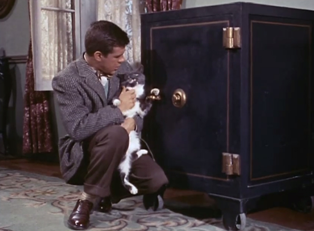 Adventures of Superman - Olsen's Millions - Jimmy Olsen Jack Larson holding gray and white tuxedo cat by safe