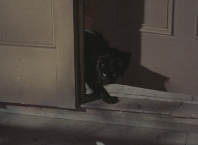 Adventures of Superman - The Lucky Cat - black cat through door