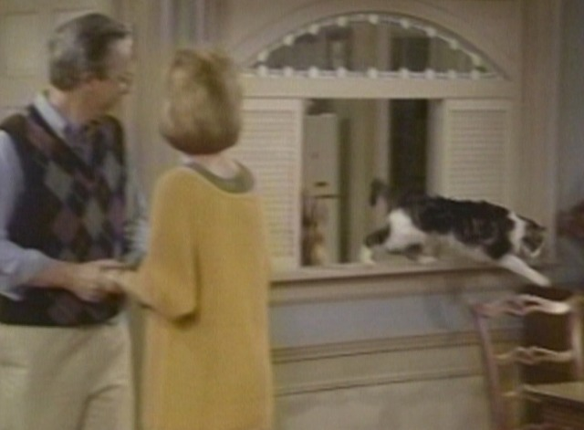 Alf - Pilot episode Lucky cat leaps from kitchen to living room