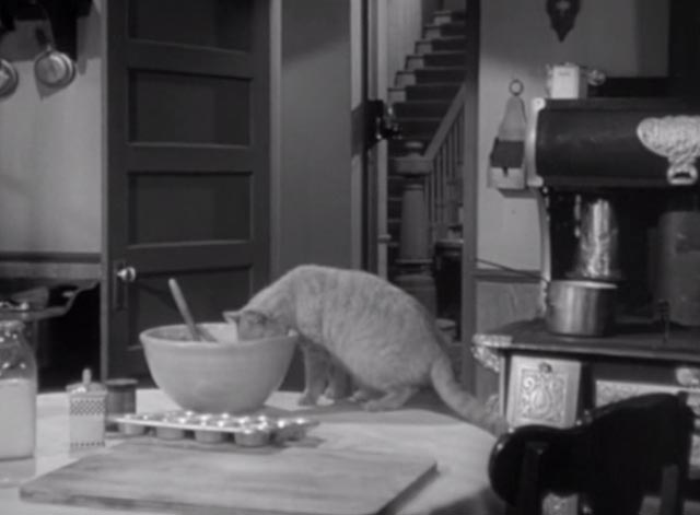 Alfred Hitchcock Presents - There Was an Old Woman - orangy tabby cat Tippie with nose in bowl in kitchen